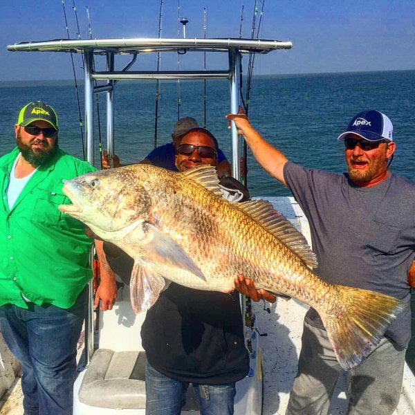 Galveston Fishing Report