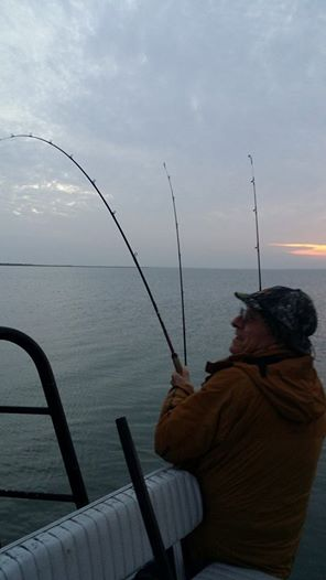 Galveston fishing report December 2014