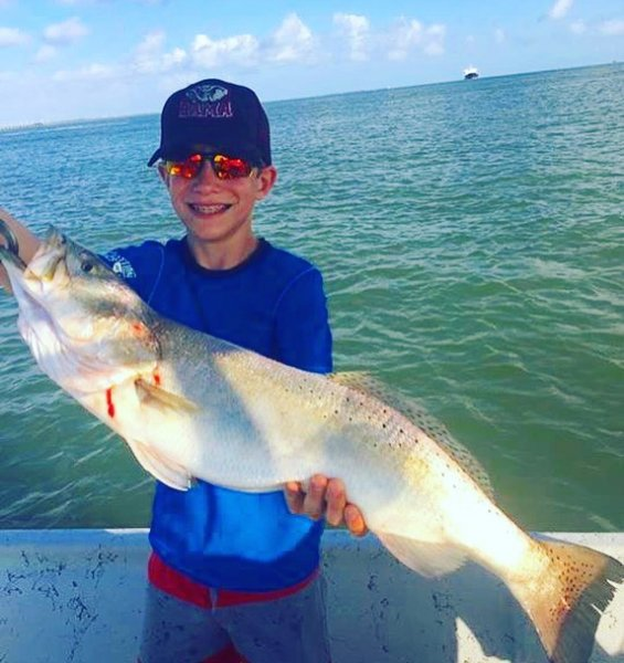Galveston Speckled Trout