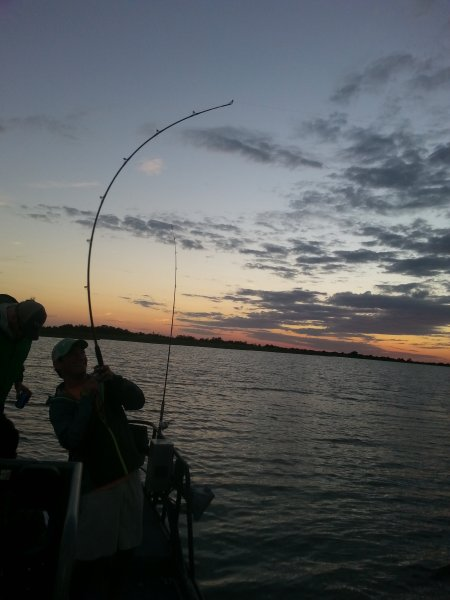 Galveston Fishing Report February