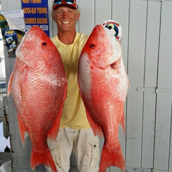 Galveston Red Snapper