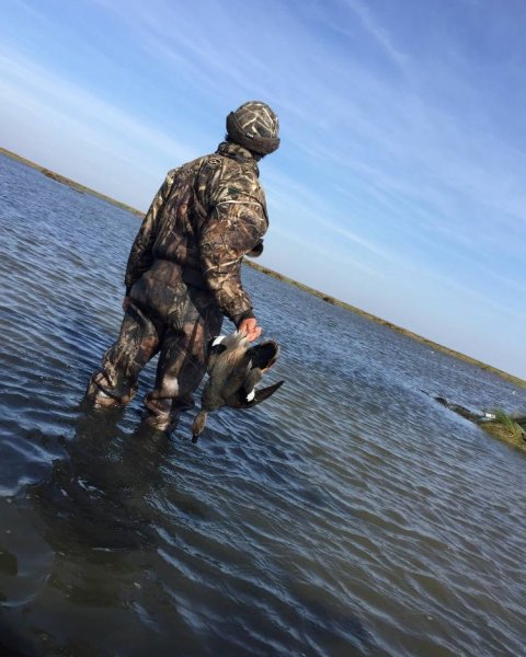 Galveston Duck Hunting