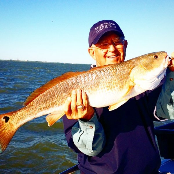 Galveston Redfish