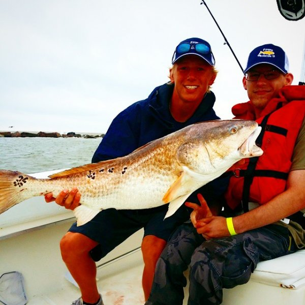 galveston red fish