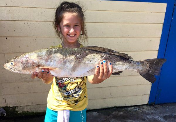 Galveston Fishing Report – August Summer Fishing