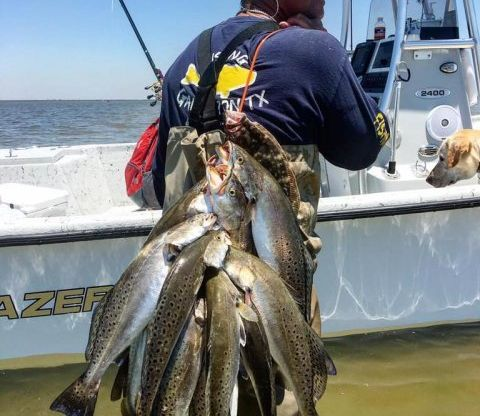 Reflecting Back at Our 2016 Galveston Fishing and Looking Ahead at 2017