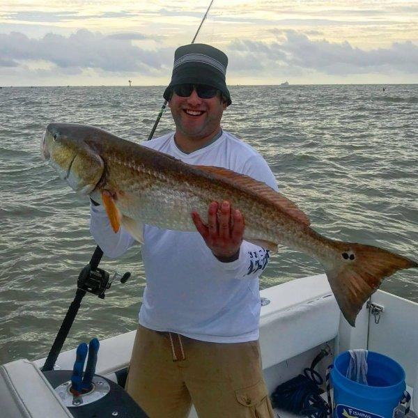 Galveston Bull Red